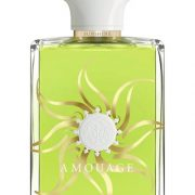 Amouage Sunshine Men (Амуаж)
